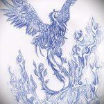 эскиз тату жар птица №850 - классный вариант рисунка, который удачно можно использовать для преобразования и нанесения как татуировка жар птица на спине