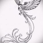 эскиз тату жар птица №641 - достойный вариант рисунка, который удачно можно использовать для переработки и нанесения как татуировка жар птица на спине