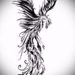 эскиз тату жар птица №773 - интересный вариант рисунка, который успешно можно использовать для преобразования и нанесения как татуировка жар птица на животе
