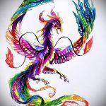 эскиз тату жар птица №252 - крутой вариант рисунка, который удачно можно использовать для доработки и нанесения как татуировка жар птица на бедре