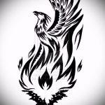 эскиз тату жар птица №333 - уникальный вариант рисунка, который успешно можно использовать для переработки и нанесения как татуировка жар птица на бедре