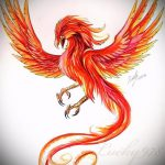 эскиз тату жар птица №643 - крутой вариант рисунка, который успешно можно использовать для переделки и нанесения как татуировка жар птица на руке