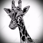 эскиз тату жираф №945 - классный вариант рисунка, который легко можно использовать для переработки и нанесения как жираф татуировка черная