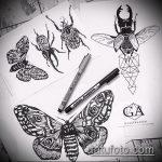 эскиз тату жук №484 - интересный вариант рисунка, который хорошо можно использовать для переработки и нанесения как татуировка жук в клетке