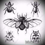 эскиз тату жук №922 - эксклюзивный вариант рисунка, который удачно можно использовать для преобразования и нанесения как татуировка жук на среднем пальце
