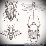 эскиз тату жук №38 - эксклюзивный вариант рисунка, который легко можно использовать для преобразования и нанесения как татуировка жук на руке