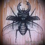 эскиз тату жук №604 - достойный вариант рисунка, который хорошо можно использовать для переделки и нанесения как татуировка жук на среднем пальце