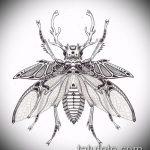 эскиз тату жук №486 - эксклюзивный вариант рисунка, который удачно можно использовать для переделки и нанесения как татуировка жук в клетке