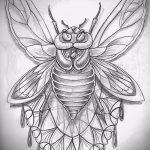 эскиз тату жук №224 - прикольный вариант рисунка, который хорошо можно использовать для преобразования и нанесения как татуировка жук на среднем пальце
