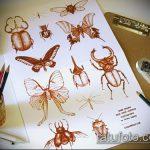эскиз тату жук №55 - интересный вариант рисунка, который хорошо можно использовать для преобразования и нанесения как татуировка жук на среднем пальце