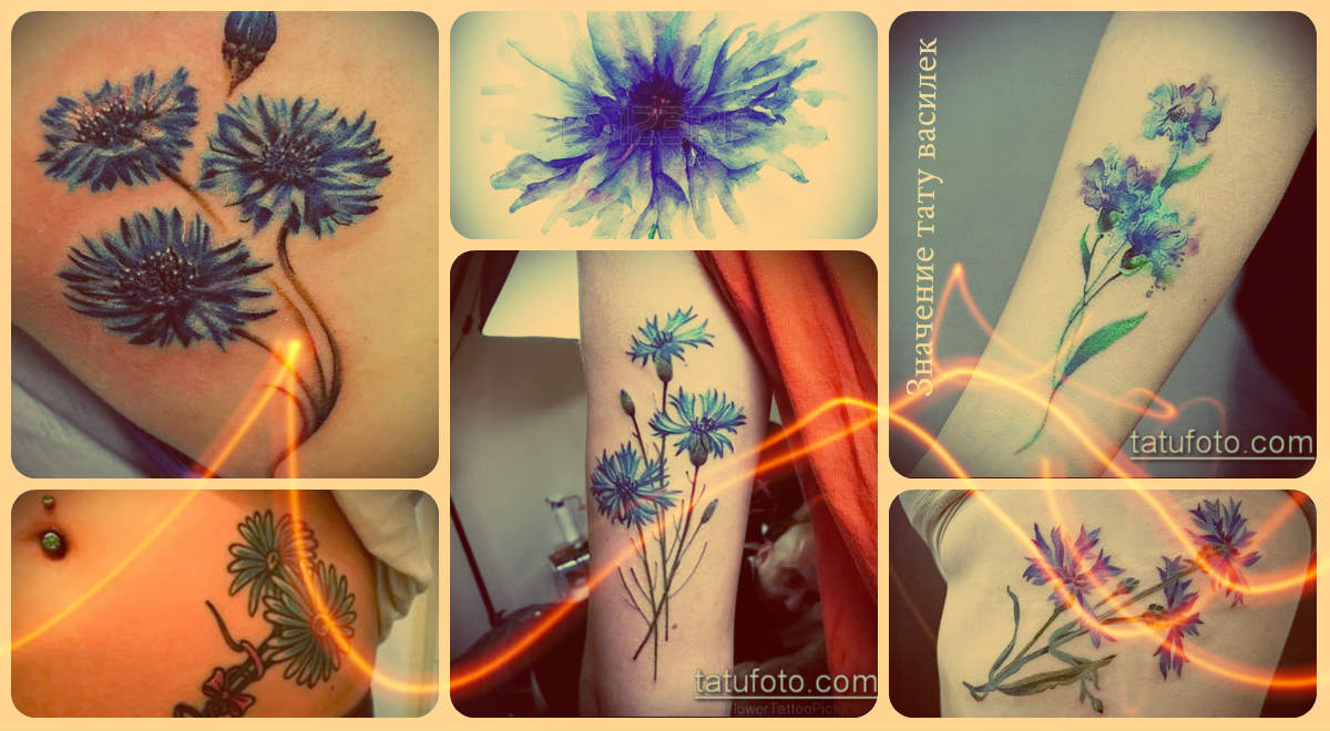 Значение тату василек - классные примеры готовых татуировок на фото - рисунки