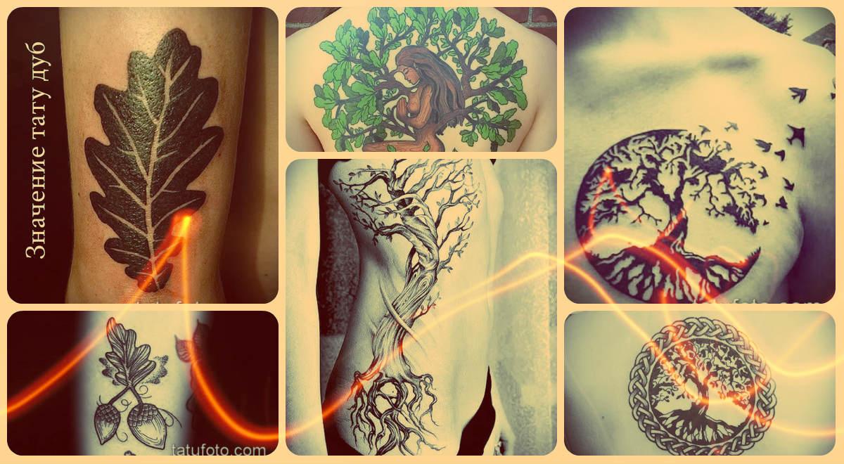 Значение тату дуб - оригинальные фото примеры классных татуировок