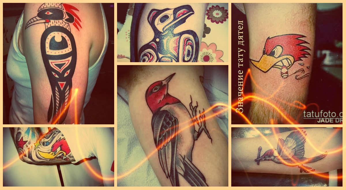 Значение тату дятел и примеры классных готовых тату на фото