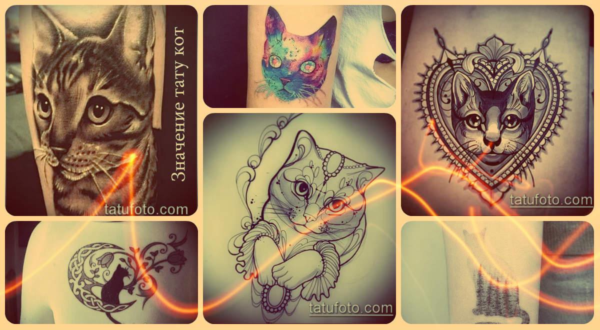 Значение тату кот и примеры интересных готовых тату на фото