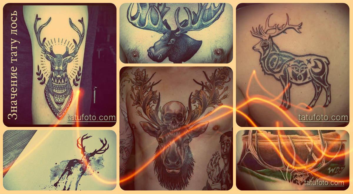 Значение тату лось - примеры интересных тату на фото