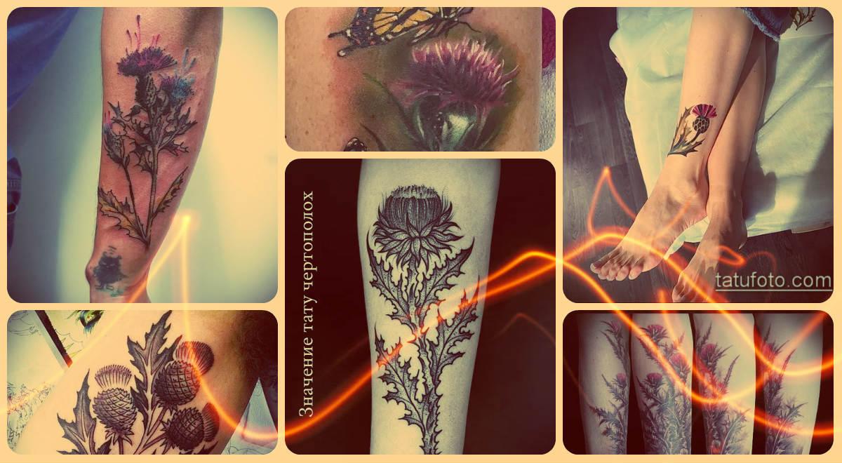 Значение тату чертополох - классные примеры готовых татуировок