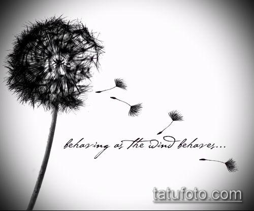 фото одуванчик с птицами (Dandelion Tatto) (значение) - пример рисунка - 027 tatufoto.com