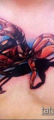 фото тату Краб (Рак) (значение) – пример интересного рисунка тату – 024 tatufoto.com