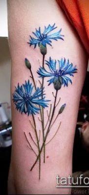 фото тату василек (cornflower tattoo) (значение) – пример рисунка – 006 tatufoto.com