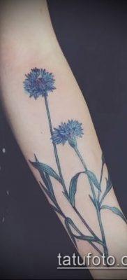 фото тату василек (cornflower tattoo) (значение) – пример рисунка – 008 tatufoto.com