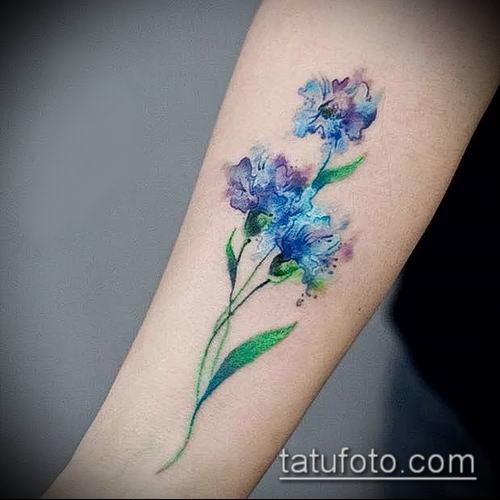 Цветок василек на татуировках