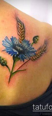 фото тату василек (cornflower tattoo) (значение) – пример рисунка – 019 tatufoto.com