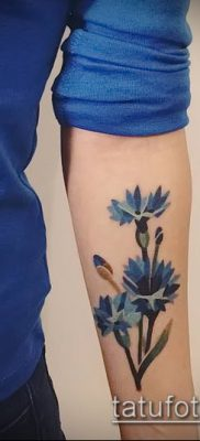 фото тату василек (cornflower tattoo) (значение) – пример рисунка – 022 tatufoto.com