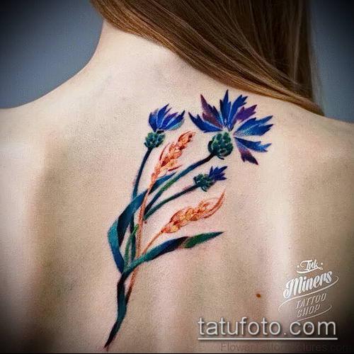 фото тату василек (cornflower tattoo) (значение) - пример рисунка - 024 tatufoto.com