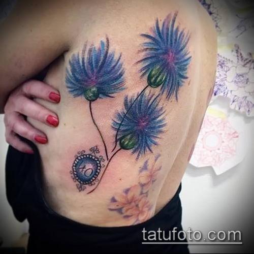фото тату василек (cornflower tattoo) (значение) - пример рисунка - 028 tatufoto.com