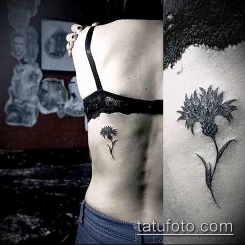 фото тату василек (cornflower tattoo) (значение) - пример рисунка - 033 tatufoto.com