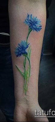 фото тату василек (cornflower tattoo) (значение) – пример рисунка – 037 tatufoto.com