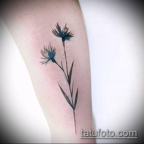 фото тату василек (cornflower tattoo) (значение) - пример рисунка - 039 tatufoto.com