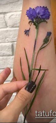 фото тату василек (cornflower tattoo) (значение) – пример рисунка – 042 tatufoto.com