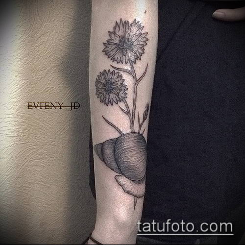 фото тату василек (cornflower tattoo) (значение) - пример рисунка - 043 tatufoto.com