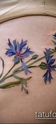 фото тату василек (cornflower tattoo) (значение) – пример рисунка – 045 tatufoto.com