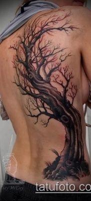 фото тату дуб (tattoo oak) (значение) – пример рисунка – 003 tatufoto.com