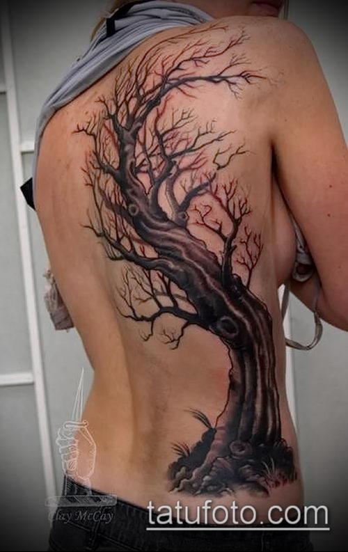 фото тату дуб (tattoo oak) (значение) - пример рисунка - 003 tatufoto.com