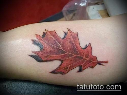 фото тату дуб (tattoo oak) (значение) - пример рисунка - 006 tatufoto.com