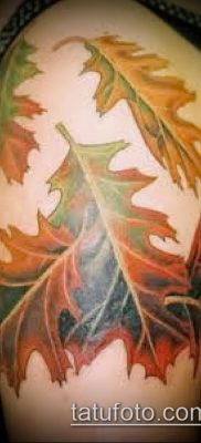фото тату дуб (tattoo oak) (значение) – пример рисунка – 009 tatufoto.com