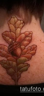 фото тату дуб (tattoo oak) (значение) – пример рисунка – 012 tatufoto.com