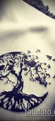 фото тату дуб (tattoo oak) (значение) – пример рисунка – 017 tatufoto.com