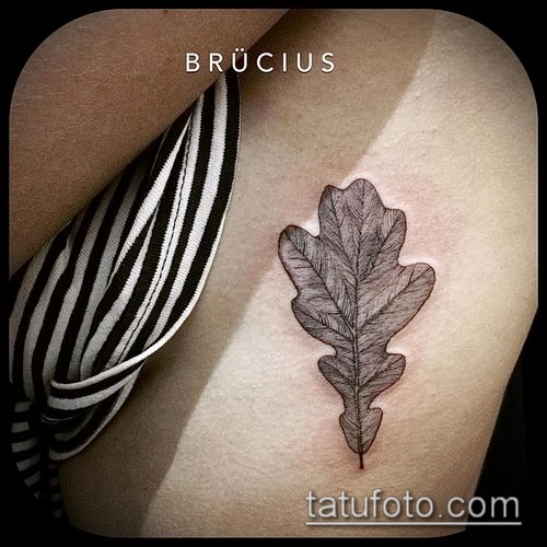 фото тату дуб (tattoo oak) (значение) - пример рисунка - 019 tatufoto.com