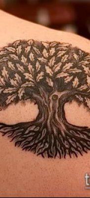 фото тату дуб (tattoo oak) (значение) – пример рисунка – 022 tatufoto.com
