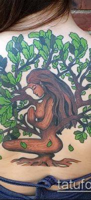 фото тату дуб (tattoo oak) (значение) – пример рисунка – 029 tatufoto.com