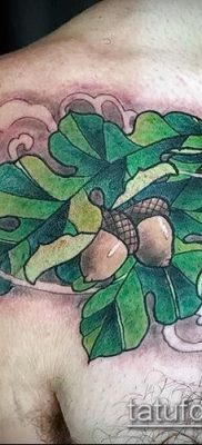 фото тату дуб (tattoo oak) (значение) – пример рисунка – 032 tatufoto.com