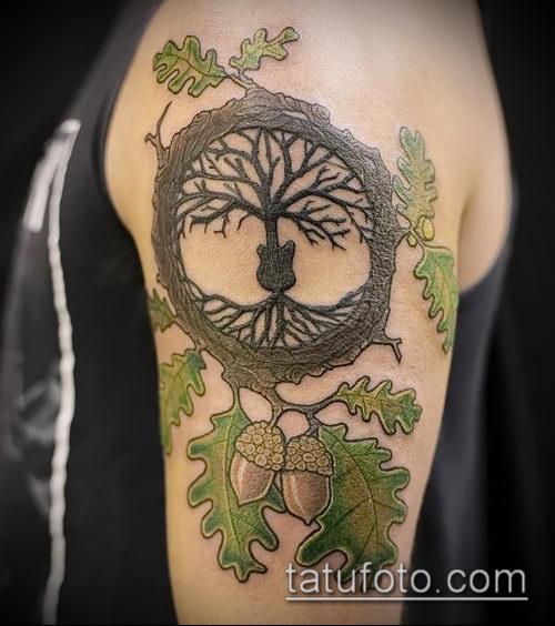 фото тату дуб (tattoo oak) (значение) - пример рисунка - 034 tatufoto.com
