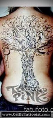 фото тату дуб (tattoo oak) (значение) – пример рисунка – 037 tatufoto.com