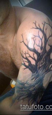 фото тату дуб (tattoo oak) (значение) – пример рисунка – 042 tatufoto.com