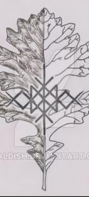 фото тату дуб (tattoo oak) (значение) – пример рисунка – 043 tatufoto.com