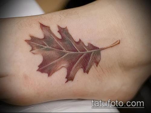 фото тату дуб (tattoo oak) (значение) - пример рисунка - 044 tatufoto.com